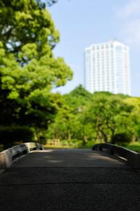 公園の石橋と高層ビルの写真素材 [FYI01442836]