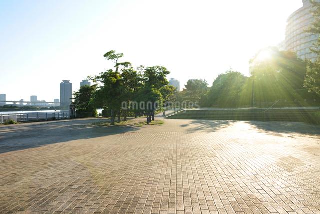 逆光に輝く石畳の遊歩道の写真素材 [FYI01442894]