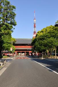 増上寺三門と東京タワーの写真素材 [FYI01442967]
