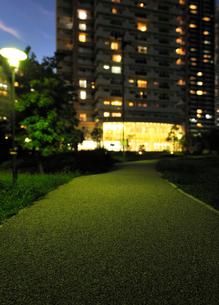 遊歩道とマンションの灯りの写真素材 [FYI01442971]