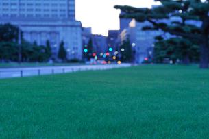 早朝の皇居外苑の写真素材 [FYI01442984]