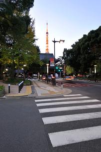 東京タワーと増上寺三門の写真素材 [FYI01443047]