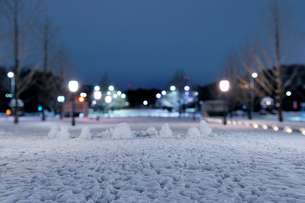 大雪の深夜の行幸通りの写真素材 [FYI01443053]