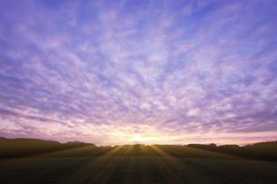 朝焼けのうろこ雲と朝日の写真素材 [FYI01443055]