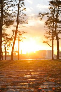 お台場の夕日と散策路の写真素材 [FYI01443121]