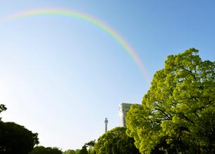 新緑と虹の写真素材 [FYI01443192]