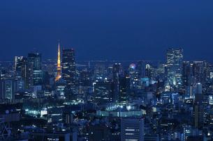 東京タワーと高層ビル群の灯の写真素材 [FYI01443203]