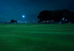夜の山下公園と青い芝生の写真素材 [FYI01443204]