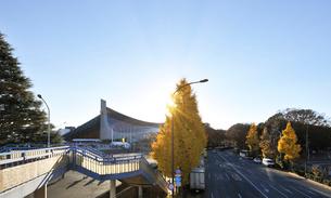 銀杏の黄葉と代々木競技場第一体育館の写真素材 [FYI01443264]