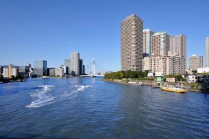 佃大橋より見る隅田川と高層ビル群の写真素材 [FYI01443274]