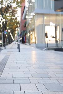 早朝の表参道の歩道の写真素材 [FYI01443289]