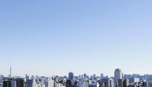 豊島区役所屋上庭園から見るビルの連なりの写真素材 [FYI01443322]