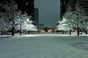 大雪の深夜の行幸通りと丸の内のビル群の写真素材 [FYI01443338]