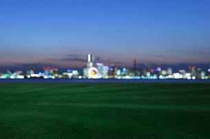 青い芝生と横浜港の灯の写真素材 [FYI01443341]