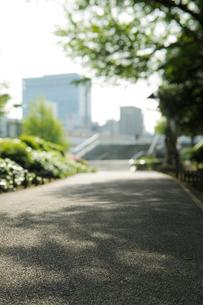上野公園の遊歩道からパンダ橋方向を見るの写真素材 [FYI01443395]