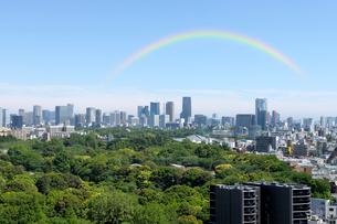 新緑の森と都心の高層ビル群の写真素材 [FYI01443423]