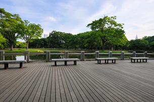 代々木公園のウッドデッキと都心のビルの写真素材 [FYI01443430]