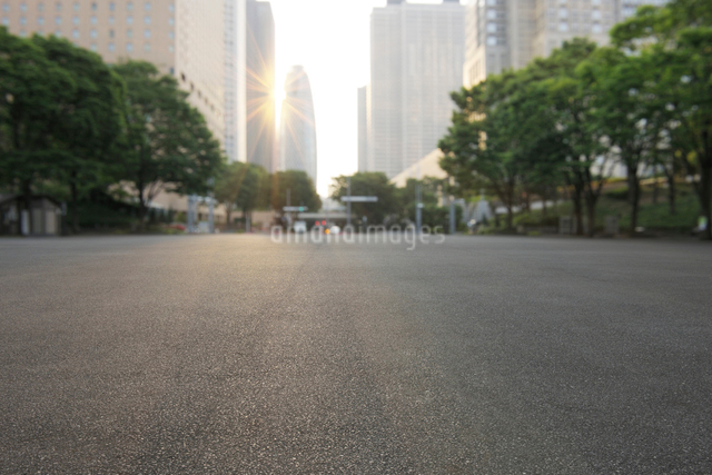 朝日と新宿中央公園の広場の写真素材 [FYI01443495]