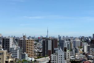 豊島区庁舎10階豊島の森から見る東京スカイツリー方向の眺めの写真素材 [FYI01443525]