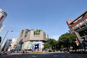 表参道神宮前交差点の写真素材 [FYI01443526]