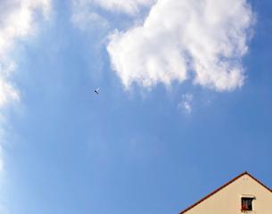 赤い屋根とトンボの写真素材 [FYI01443553]