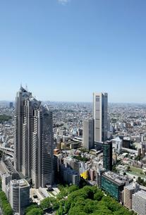 東京都庁舎展望室から見る新緑と高層ビルの写真素材 [FYI01443607]