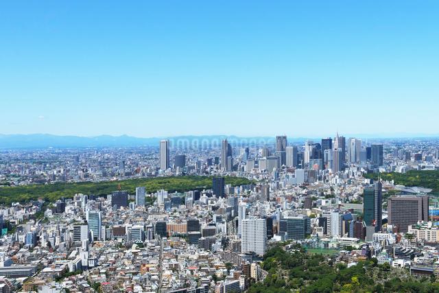 東京シティビューから見る新緑の新宿副都心方向の眺めの写真素材 [FYI01443685]
