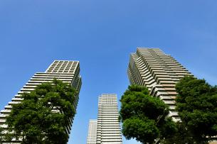 南千住の高層タワーマンションの写真素材 [FYI01443694]