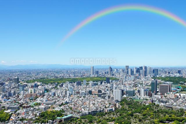 東京シティビューから見る新緑の新宿方向の眺めの写真素材 [FYI01443702]