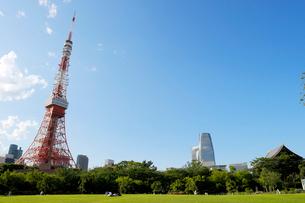 東京タワーと新緑の芝の写真素材 [FYI01443727]