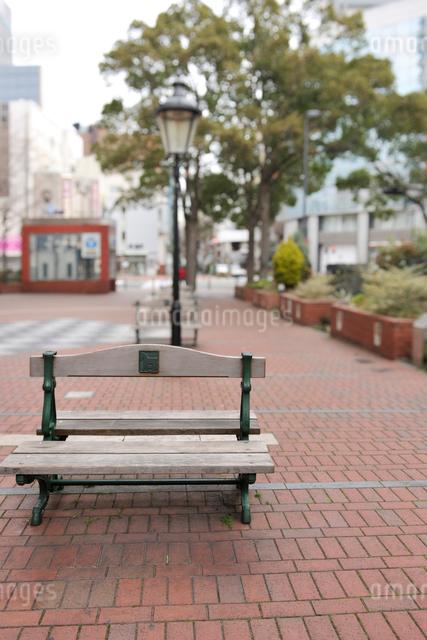 木のベンチと赤レンガの歩道の写真素材 [FYI01443746]