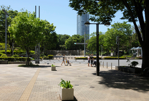 新緑と石畳の歩道の写真素材 [FYI01443774]