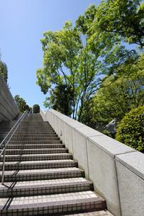 新緑と石畳の階段の写真素材 [FYI01443776]