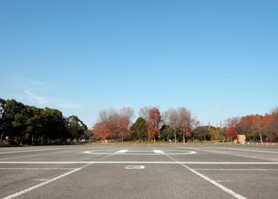 ヘリポートのある水元公園の駐車場の写真素材 [FYI01443802]