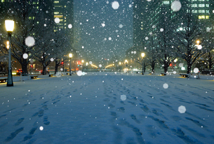 大雪の丸の内夜景の写真素材 [FYI01443815]