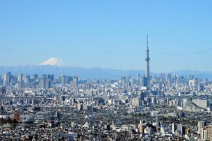 アイ・リンクタウン市川から見る富士山と東京スカイツリーの写真素材 [FYI01443816]
