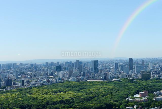 新緑の森と東京のビル群の写真素材 [FYI01443828]