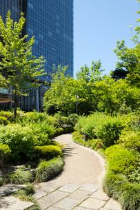 新緑の散策路と高層ビルの写真素材 [FYI01443875]
