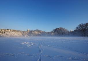 積雪の代々木公園の写真素材 [FYI01443959]
