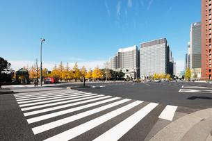 和田倉門交差点の横断歩道と高層ビルの写真素材 [FYI01443963]