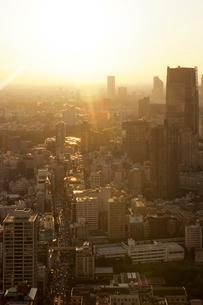 東京タワー特別展望台から見る夕日の新宿方向の眺めの写真素材 [FYI01443965]