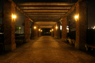 夜の山下公園の石畳のテラスの写真素材 [FYI01444007]