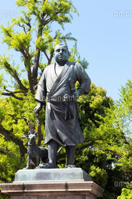 上野公園の西郷隆盛像の写真素材 [FYI01444116]