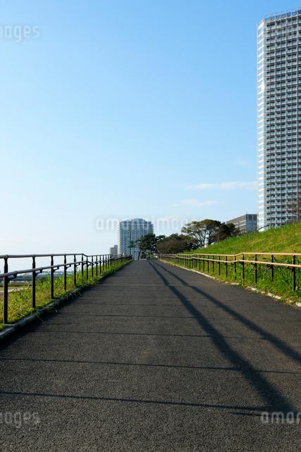 アスファルトの坂道と二子玉川の高層ビルの写真素材 [FYI01444187]