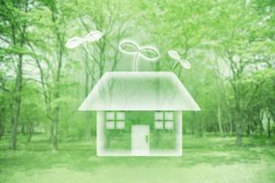 緑と双葉の住宅のイラスト素材 [FYI01444189]