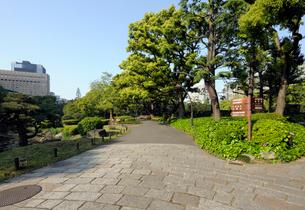 朝の日比谷公園の石畳の遊歩道の写真素材 [FYI01444191]