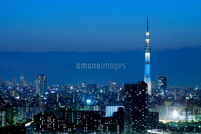 タワーホール船堀から見る東京スカイツリー方向の眺めの写真素材 [FYI01444213]