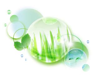 新緑と双葉のイラスト素材 [FYI01444331]