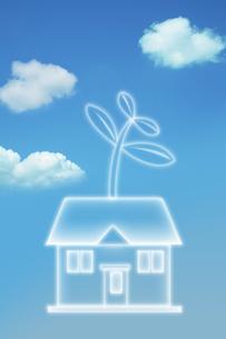 青空と伸びた双葉の住宅のイラスト素材 [FYI01444578]