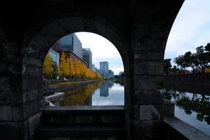 あずまやから見る馬場先濠の銀杏並木の紅葉の写真素材 [FYI01444641]